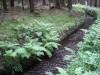 Am Dammgraben