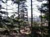 Im Nationalpark Harz 2